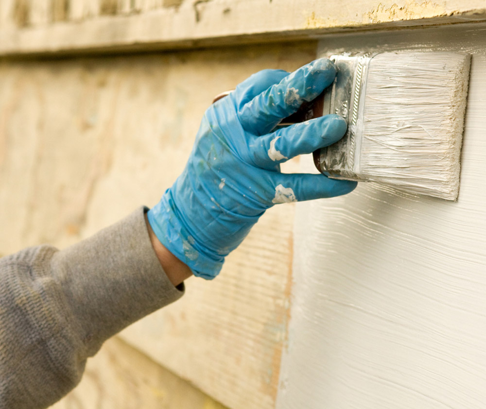 Professionals Painting Services